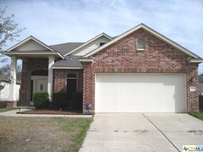 Single Family Home For Sale: 9804 Cow Page Court