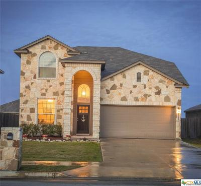 New Braunfels Single Family Home For Sale: 2419 Chad