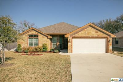 Belton Single Family Home For Sale: 3210 Purple Sage Drive