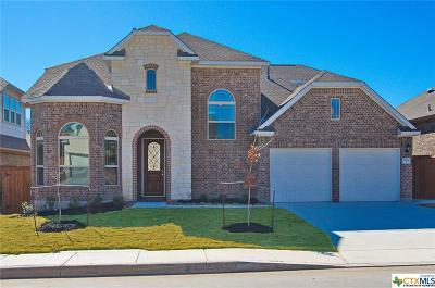San Antonio Single Family Home For Sale: 12134 White River
