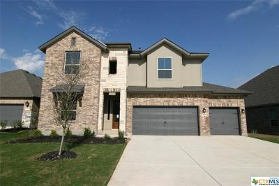 New Braunfels Single Family Home For Sale: 1424 Pioneer Drive