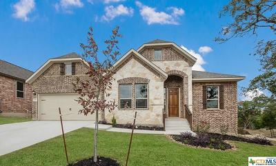 San Antonio Single Family Home For Sale: 1723 Roaring Fork