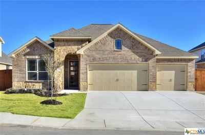 San Antonio Single Family Home For Sale: 7616 Digges View