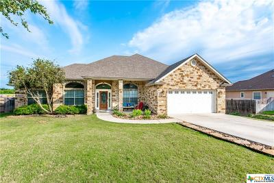New Braunfels Single Family Home For Sale: 1128 Cherry Hill