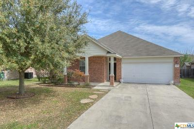 New Braunfels Single Family Home For Sale: 2059 Carlisle Castle