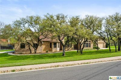San Marcos Single Family Home For Sale: 221 Quarry Springs