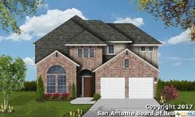 San Antonio Single Family Home For Sale: 25927 Avellino Blf