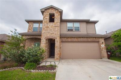 San Antonio Single Family Home For Sale: 175 Finch