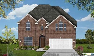 San Antonio Single Family Home For Sale: 2507 Canon Perdido