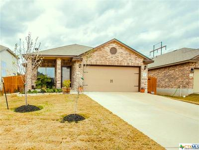 Temple Single Family Home For Sale: 1422 Amber Dawn Drive