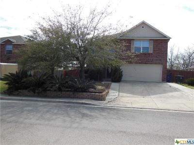 New Braunfels Single Family Home For Sale: 434 Water Lane