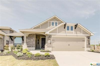 Kyle TX Single Family Home For Sale: $262,316