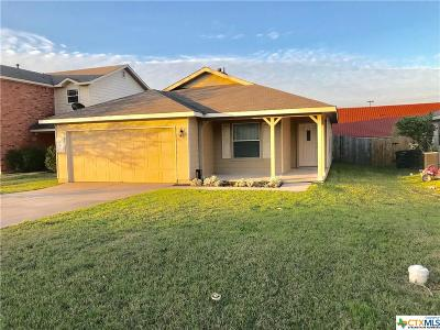 Kyle Single Family Home For Sale: 124 Agate Lake