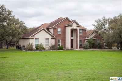 Spring Branch TX Single Family Home For Sale: $489,000