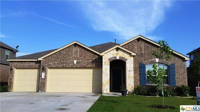New Braunfels Single Family Home For Sale: 1934 Blue Goose