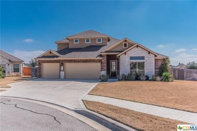 Cedar Park Single Family Home For Sale: 3200 Pradera Cove