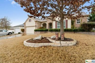 Williamson County Single Family Home For Sale: 107 Lampasas Pass