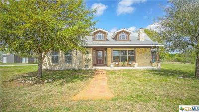 Seguin Single Family Home For Sale: 3013 Glenewinkel Road