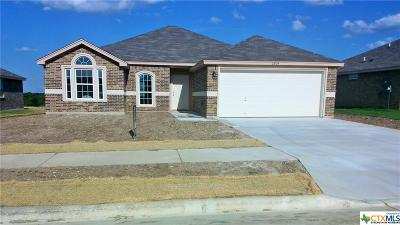 Killeen Single Family Home For Sale: 6804 Black Springs Drive
