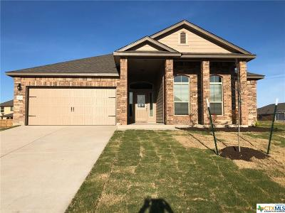 Belton Single Family Home For Sale: 5229 Fenton Drive
