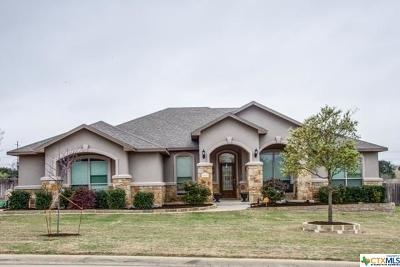 Salado Single Family Home For Sale: 3248 Hester Way