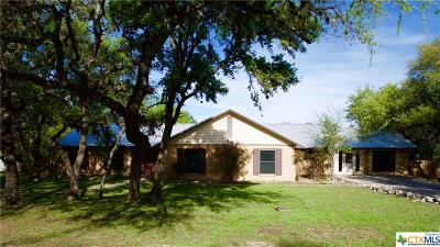 San Marcos Single Family Home For Sale: 928 Willow Creek