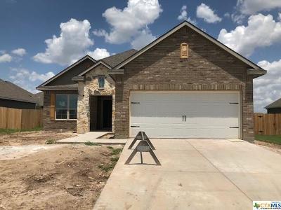 Belton Single Family Home For Sale: 5349 Lancaster Drive