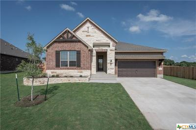Belton Single Family Home For Sale: 3027 Trinity Drive