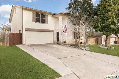 San Antonio Single Family Home For Sale: 8430 Laurel Bend