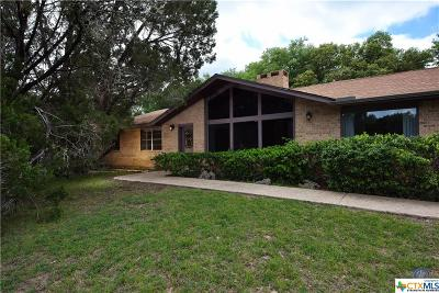 San Marcos Single Family Home For Sale: 121 Merrywood