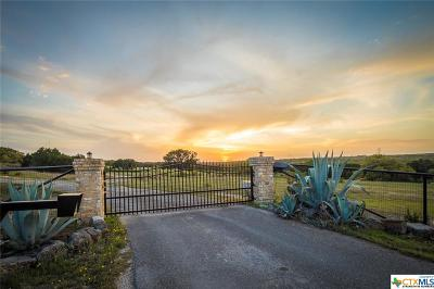 Bosque County, Bell County, Burnet County, Calhoun County, Coryell County, Lampasas County, Limestone County, Llano County, McLennan County, Mills County, Milam County, San Saba County, Williamson County, Hamilton County, Travis County, Comal County, Comanche County, Kendall County Single Family Home For Sale: 1301 Fm 2722