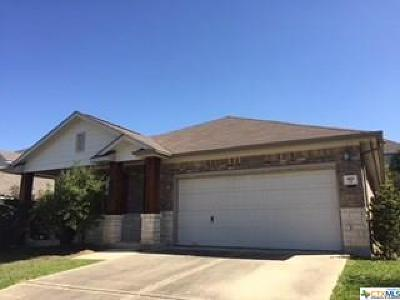 Kyle Single Family Home For Sale: 418 Summer