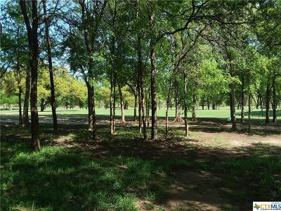 Salado Residential Lots & Land For Sale: Tbd O W Lowrey