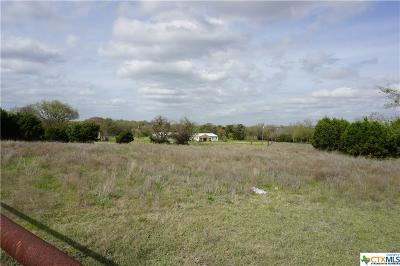 Williamson County Residential Lots & Land For Sale: 14300 Ronald W Reagan