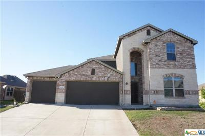 Killeen Single Family Home For Sale: 6313 Serpentine Drive