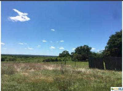 Hays County Single Family Home For Sale: 2 Cow Trail