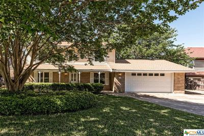 Belton Single Family Home For Sale: 638 Benchmark Trail