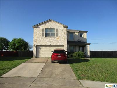 San Marcos Single Family Home Pending Take Backups: 101 Teron