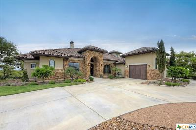 Canyon Lake Single Family Home For Sale: 1440 Red Cloud Peak