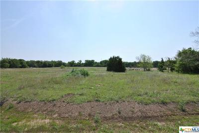 Residential Lots & Land For Sale: 119 Cumberland Drive