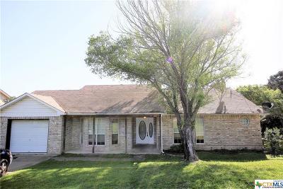 Belton Single Family Home For Sale: 13307 Rattlesnake Trl