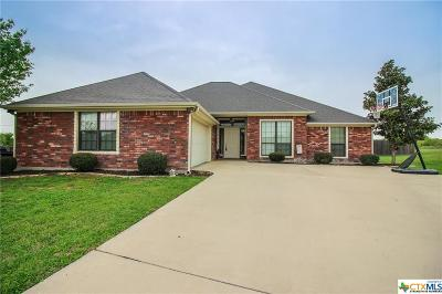 Belton Single Family Home For Sale: 616 Spring Court