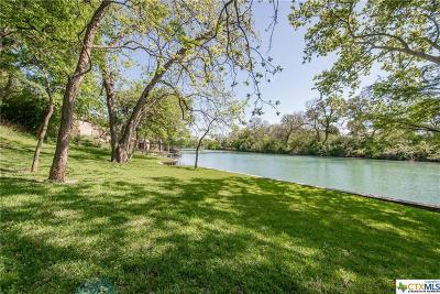 New Braunfels Single Family Home Pending Take Backups: 650 Lake Front