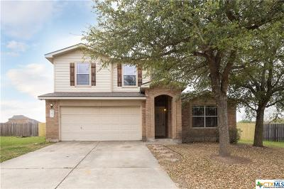 Kyle Single Family Home For Sale: 267 Western
