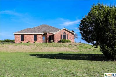 Killeen Single Family Home For Sale: 690 Irish