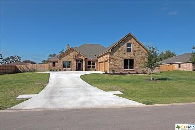 Belton Single Family Home For Sale: 240 Mountain Rose