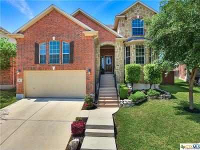 San Antonio Single Family Home For Sale: 24819 Chianti