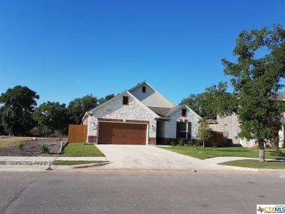 San Marcos Single Family Home For Sale: 413 Hunters Hill Drive