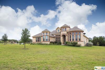 Hays County Single Family Home For Sale: 124 Bonnet Meadow Cove