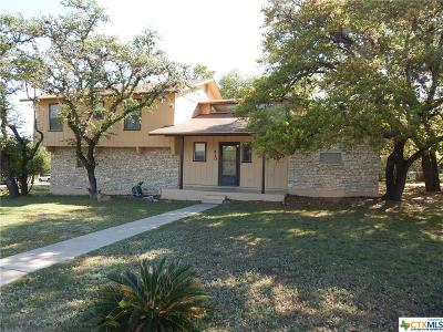 Canyon Lake Single Family Home For Sale: 410 Susie Dr